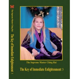 03 The Key of Immediate Enlightenment 3