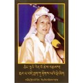 ●Sample Booklet - Tibetan